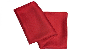 AGCO Silk Scarfes for Ladies
